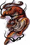 Tiger-Tattoo-Design.jpg